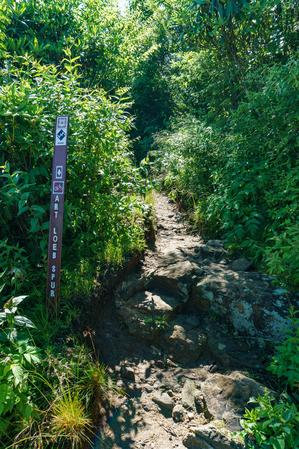 Start of the Art Loeb Spur Trail