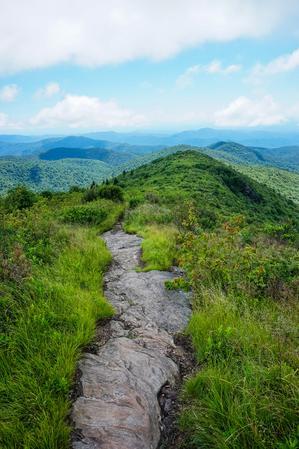 Art Loeb Trail on Tennent Mountain