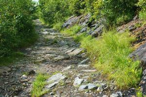 Big Rocks on the Ivestor Gap Trail