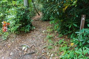Start of Duggers Creek Trail