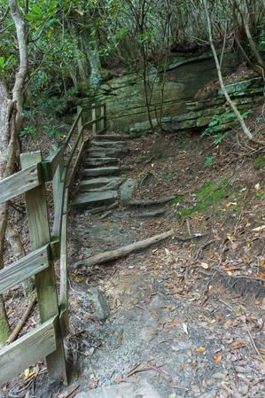 Steps to Plunge Basin Overlook
