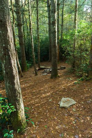 Nice Campsite on the Greenland Creek Trail