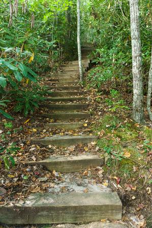 Stair Steps on Little Green Trail