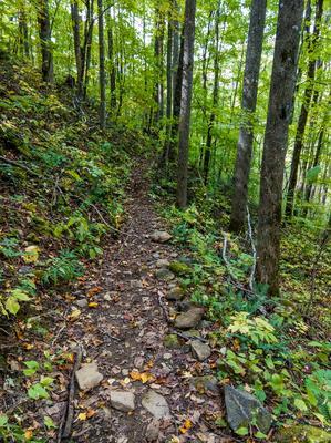 Sidehill Section of Elk Pen Trail