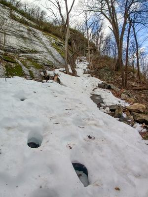 Icy Path