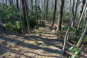 Steep Section of the Rocky Head Trail
