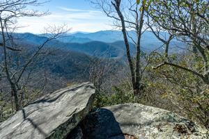View from the Rocky Head Trail