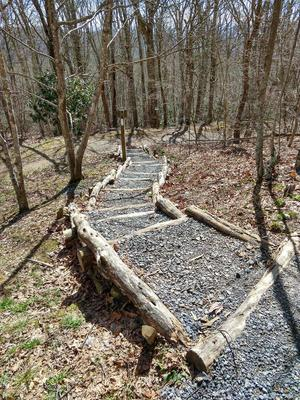 Stone Steps on the Max Patch Loop Trail