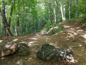 Boulders at the Start of the Bear Pen Trail