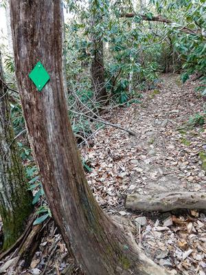 Green Blaze on the Rainbow Mountain Trail