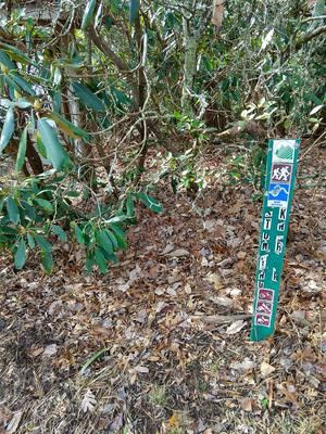 Sign stake at the start of Stomping Knob Trail.