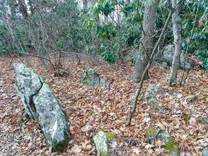 Summit Rocks on Stomping Knob