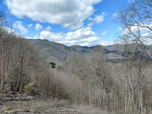 Powerline View from the Club Gap Trail