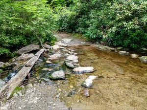 Crossing of Bubbling Spring Branch on the Flat Laurel Creek Trai