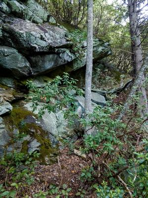 Rock Outcrop beside the Flat Laurel Creek Trail