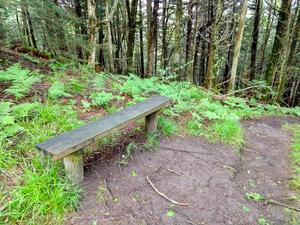 Bench on the Richland Balsam Trail