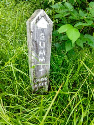 Sign Post on the Richland Balsam Trail