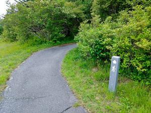 Start of the Richland Balsam Trail
