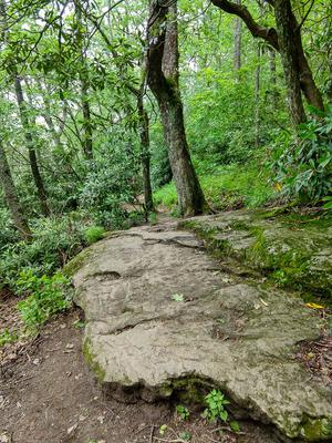 Rock Slab on the Whiteside Mountain Trail