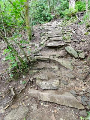 Rock Steps on the Whiteside Mountain Trail