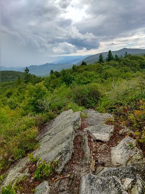 Big Firescald Knob Summit View