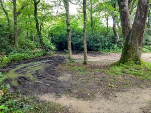 Mud Hole on the Jones Meadow Spur