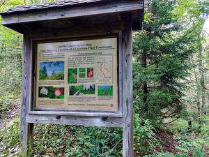 Spruce Bog Sign on the Walton Interpretive Trail