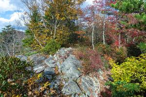 Autumn on the Summit of Bald Knob