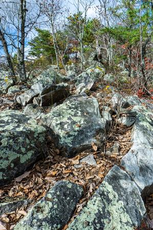 Rock Jumble on Bald Knob