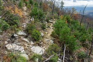 Switchback on the Mountains to Sea Trail on Bald Knob