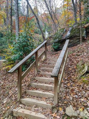 Final Steps at Toms Creek Falls