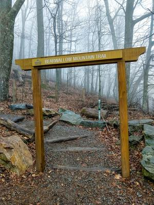 Entrance to Bearwallow Mountain Trail