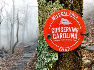 Blaze for the Wildcat Rock Trail