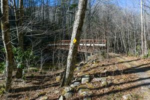 Lower Bridge on the River Loop Trail