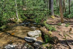 Chinquapin Mountain Trail Bridge