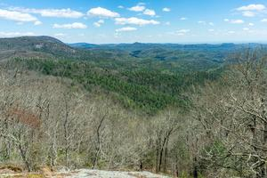 View from Lookout 5 on Chinquapin Mountain