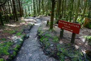Sign for the Balsam Nature Trail
